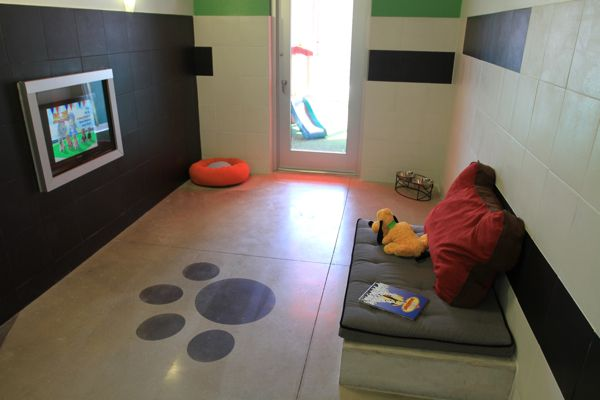 Best Friends Pet Care Review/Blog with pictures--boarding, kennel, play care