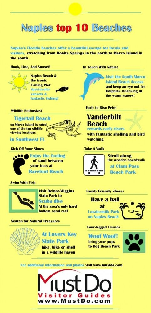 Planning a trip to Naples or Marco Island? This best beaches Infographic is great! Visit MustDo.com to see great photos and more info about these beaches.