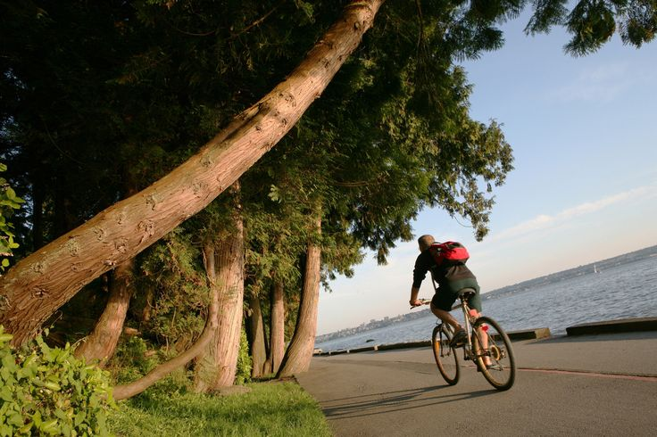 Best Bike Trails In Vancouver And Beyond