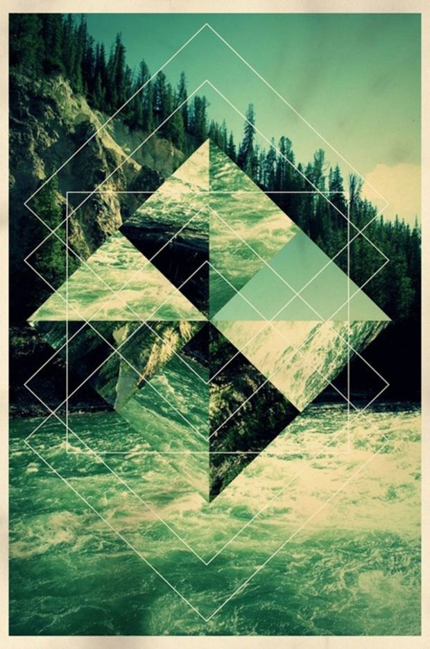 geometric designs in nature - 600×905