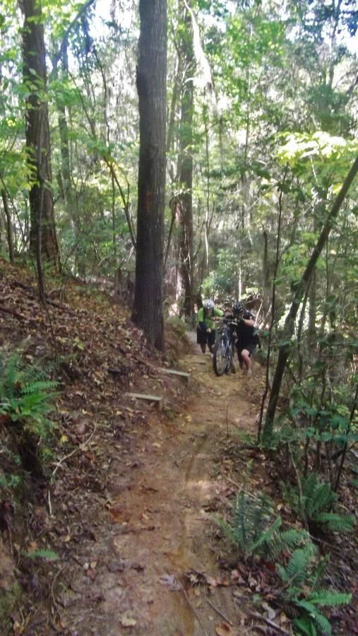 Wateree Passage Of The Palmetto Trail Mountain Bike Trail in Pinewood, South Carolina || SINGLETRACKS.COM