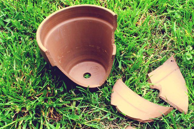 Veja como fazer um minijardim em um vaso quebrado. O passo a passo é bem simples e o resultado encantador! Confira!