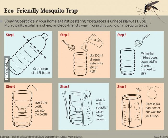 A mosquito trap, I wonder if it really works