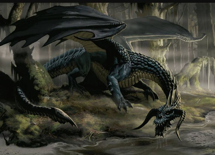 Future Prophecies - Black Dragon - YouTube