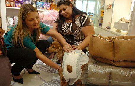 WEB LUXO - PETS: Shopping de luxo de SP tem fraldário para cachorro
