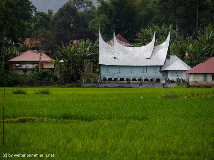 Warum Du unbedingt Bukittingi auf Sumatra besuchen solltest