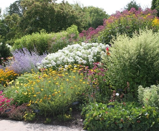 17 Best Images About Gardening On Pinterest | Gardens Planters And Perennials