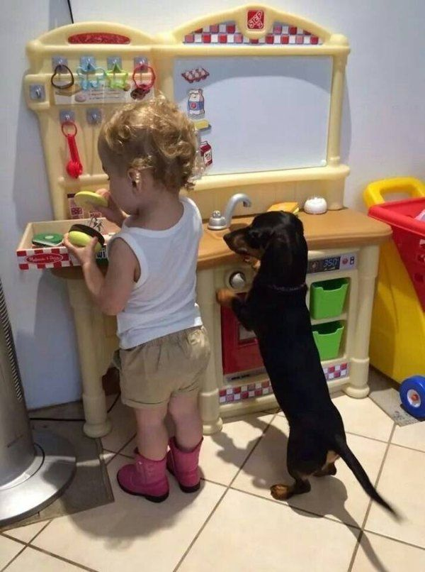 http://thechive.files.wordpress.com/2014/12/proof-that-kids-and-dogs-make-the-most-amazing-bffs-25-photos-6.jpg