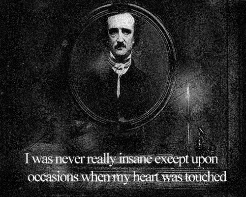 best edgar allan poe☥ images edgar allan poe  edgar allen poe what a truth