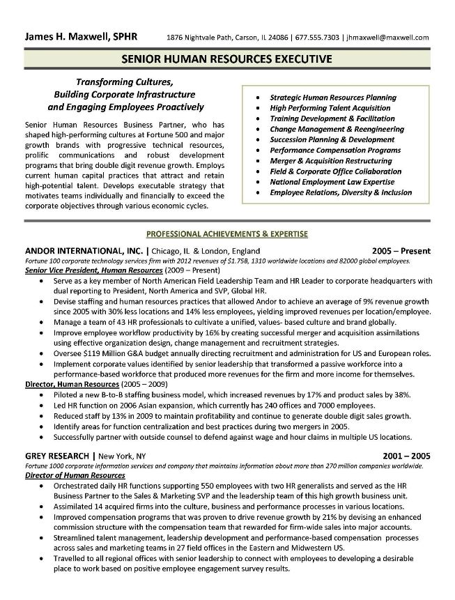 The 25+ best Executive resume ideas on Pinterest Executive - hr resume