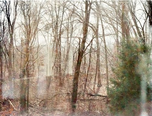 Boston photographer Linda Pagani #landscape