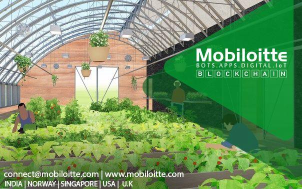 mobiloitte #technology #applicationdevelopmentcompany #iot