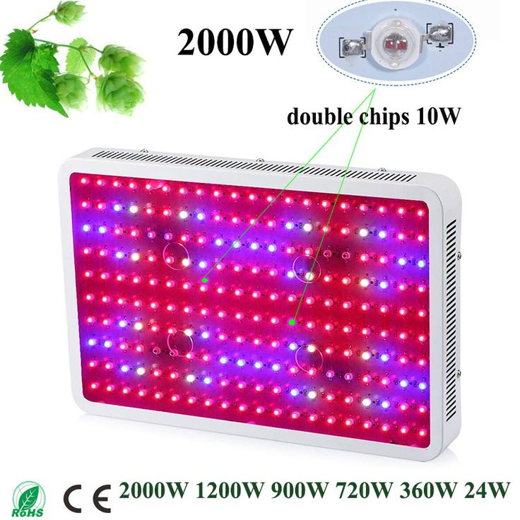 Newest Fitolampa LED Grow Light 2000W 1200W 900W 720W 360W 24W Double Chips Full spectrum LED growth lamp for aquarium growing
