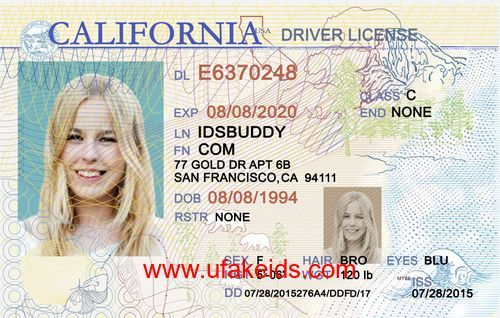 california fake id | cards | Ca drivers license, Best