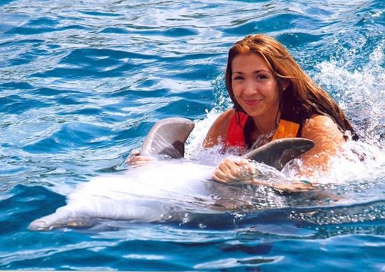 Nado con Delfines Cancun e Isla Mujeres