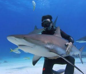Top 10 Weird Medical Breakthroughs of 2011 - Squalamine - n September it was reported that a new compound found in dogfish sharks' tissue could soon be trialled as a treatment for viruses in humans.    Read more: http://www.toptenz.net/top-10-weird-and-wonderful-medical-breakthroughs-of-2011.php