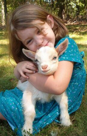 Little girl with Spring lamb