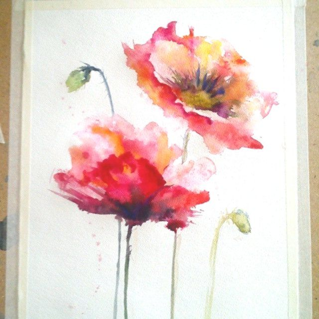 Aquarell Mohnblumen Blumen Meine Wenigkeit Zeichne Tag Fur Tag