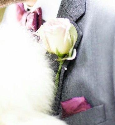 Amnesia rose buttonhole