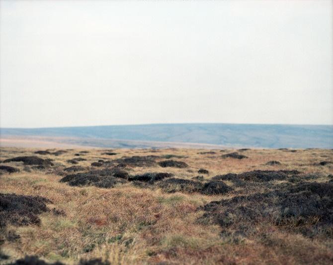 Jodie Herbage: Jodieherbag Portfolio