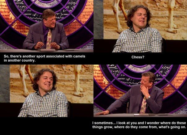 QI...love this show!