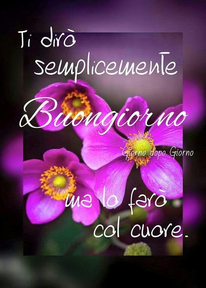 Buon giorno saluti good morning good night e good for Foto per il buongiorno