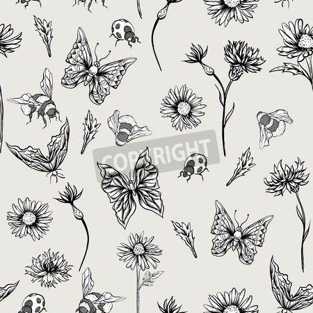 夏白黒ヴィンテージ シームレス花柄鎮静ヤグルマギクの花、テントウムシ バンブルビーと蝶。ベクトルぼろぼろイラスト