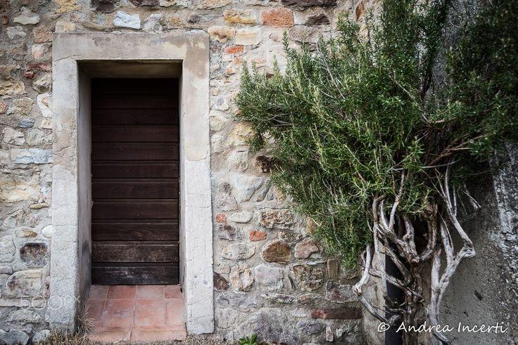 Ancient door - null