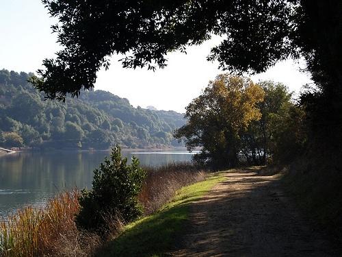 Lake Chabot Trail - California Trails   AllTrails.com