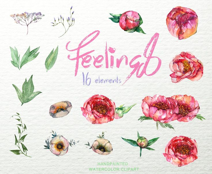 Feelings-Boho Flowers ClipArt