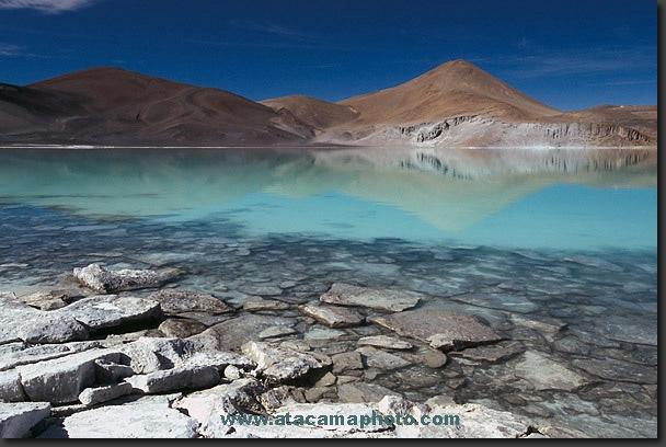 Green lagoon in Atacama (Chile)