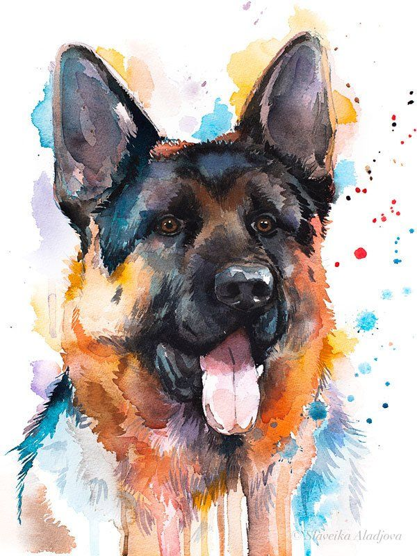 German Shepherd Watercolor Painting Print By Slaveika Aladjova Animal Illustration Home Decor Nursery Contemporary Dog Art Wall Art German Shepherd Painting Dog Watercolor Painting German Shepherd Art