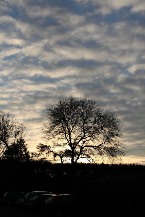 A winters sunset at Winters Barns