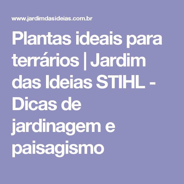 Plantas ideais para terrários    Jardim das Ideias STIHL - Dicas de jardinagem e paisagismo