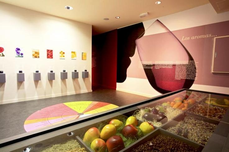 Visita el Museo del Vino de la D.O. Campo de Borja (Veruela- Vera de Moncayo)