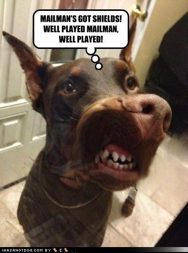 Funny Dog Pictures Mailman S Got Shields Well Played