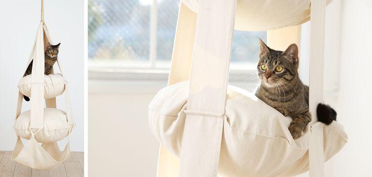 Fensterliegen / Cat Trapez | KRATZMÖBEL | Profeline Katzenshop