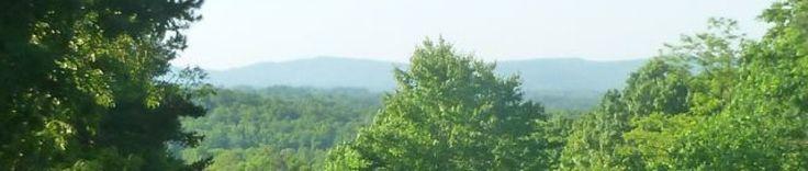 Summer Squash Casserole | From My Carolina Home