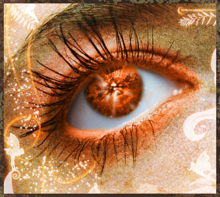 Google Image Result for http://www.deviantart.com/download/97166302/Fairy_of_Autumn_by_OrangeRoom.jpg