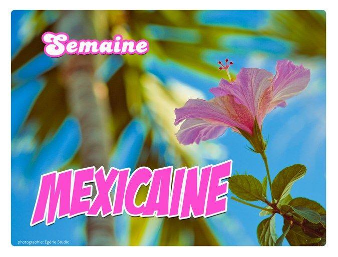 Épicerie et menu pour semaine mexicaine avec pinto et riz brun