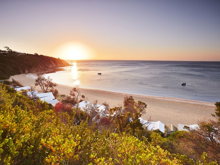 Find your way to food, wine, relaxation, adventure and coastal encounters just an hour's easy drive from Melbourne's CBD. Plan your trip to the Mornington Peninsula with our top picks of the region.