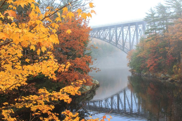 Fall foliage - Mohawk Trail MA
