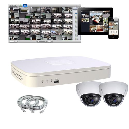 Skyway Security - Digital Security Solutions - IP Camera System with 2 Indoor/Outdoor IR Domes, $683.00 (https://www.skywaysecurity.com/ip-camera-system-with-2-indoor-outdoor-ir-domes/)