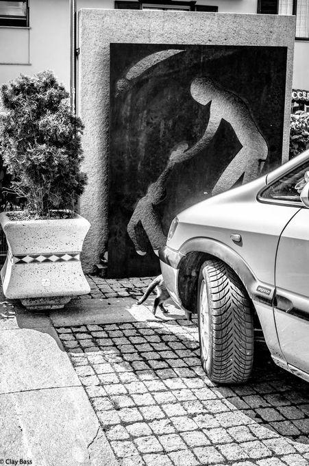 "Photo ""incidentecongattoescultura"" by claybass"