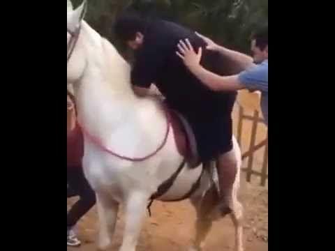 Gordinho caindo do cavalo