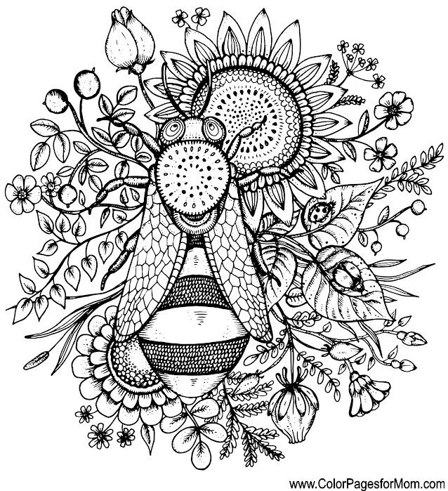 From Beautiful Flowers Detailed Floral Designs Coloring Book