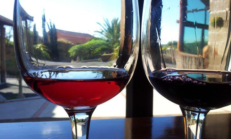 Bodega Frontos, einzigartige kanarische Weine um die charmante Umgebung von Teneriffa zu genießen