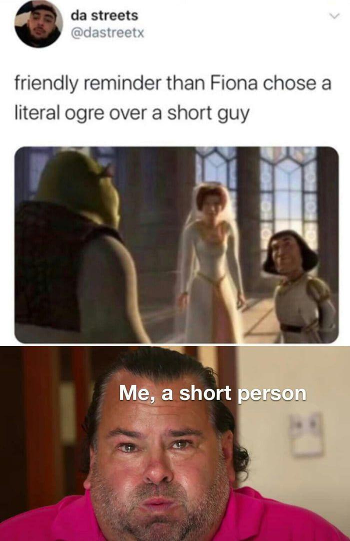Shrek Is Love In 2021 Internet Funny Short Person Princess Fiona