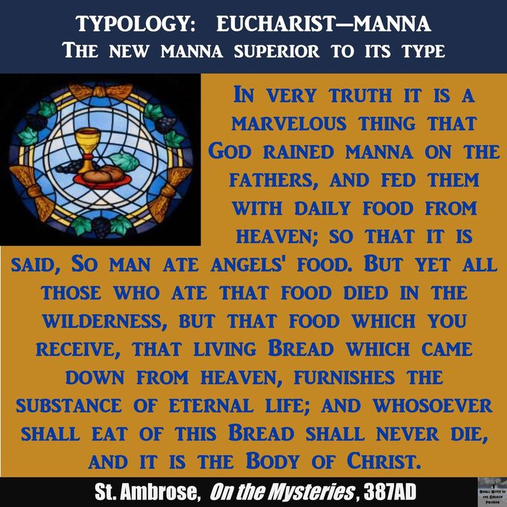 St. Ambrose is so clear that the Eucharist is the reality that Christ's light shown on the Shadow of Manna. While Manna sustained the body, the Eucharist sustains the body and soul eternally.  #christian #catholic #ancientfaith