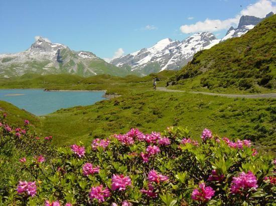 Switzerland: Melchsee-Frutt near Lucerne